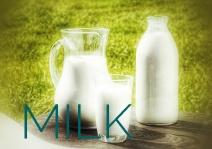 ホットミルクを美味しく飲む方法やレシピとは?お腹に優しい作り方も1
